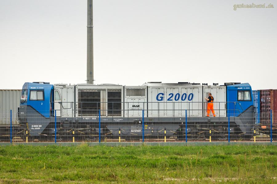 Eurogate Containerterminal Wilhelmshaven (CTW): Diesellok (273 005-9) an der KV-Umschlaganlage