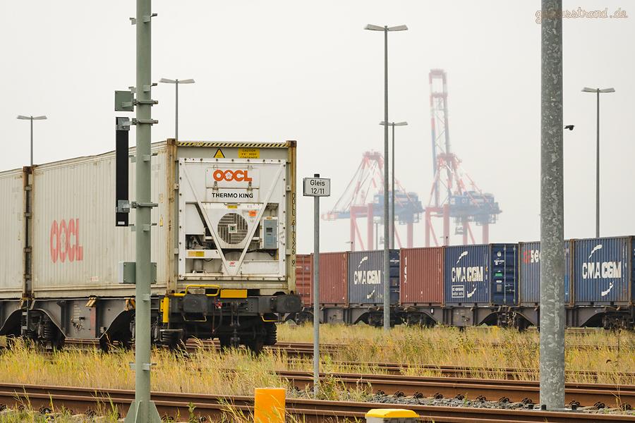 GLEISANBINDUNG CONTAINERTERMINAL WILHELMSHAVEN: Containerzüge am Bahnhof JadeWeserPort