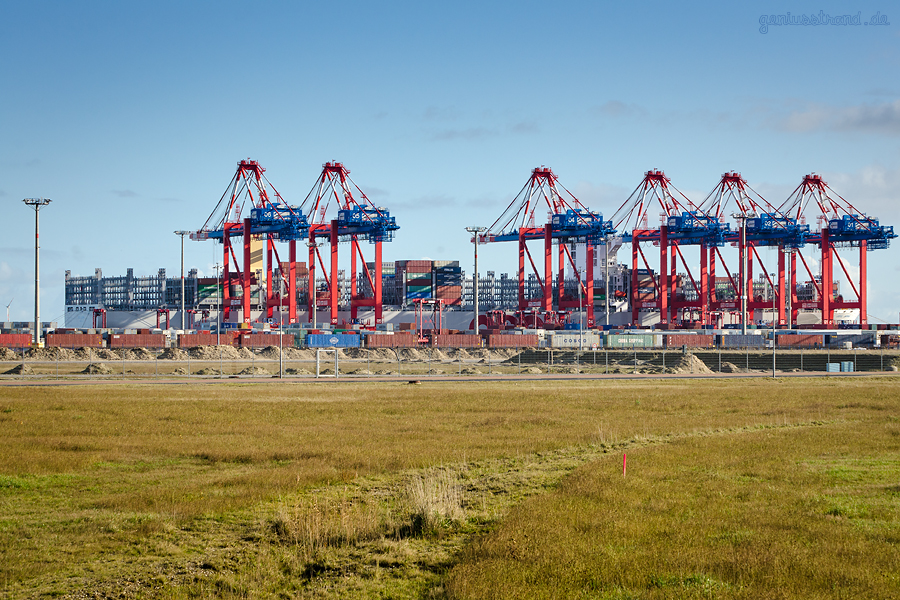 Jade weser port