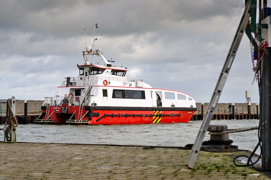 Hooksiel Außenhafen: Crew Transfer Vessel CARBOCLYDE (L 24 m) von OPUS Marine