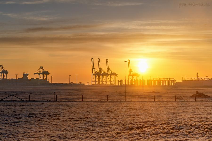 JADEWESERPORT: Sonnenaufgang am Container Terminal Wilhelmshaven (CTW)