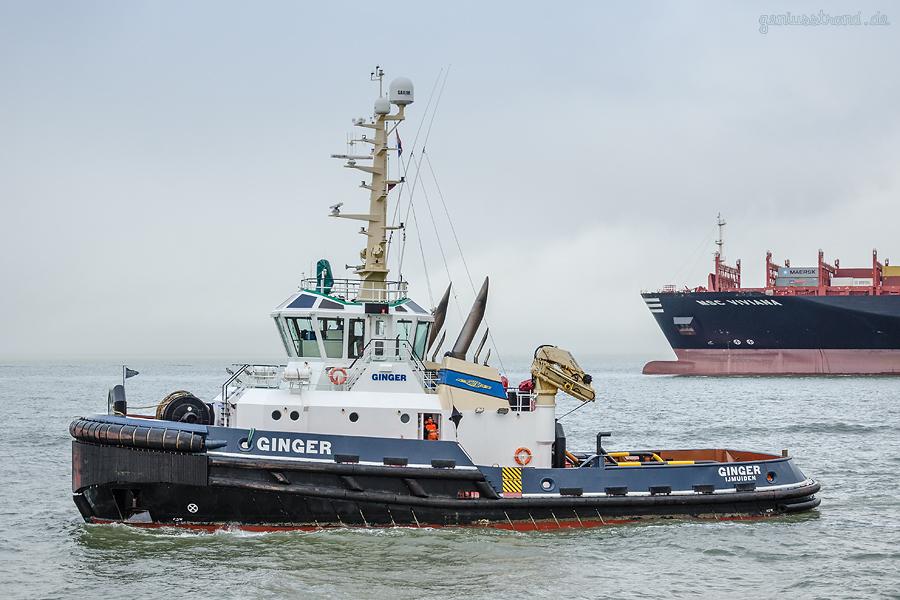 JadeWeserPort Wilhelmshaven: Schlepper GINGER (L 33 m) fährt zum Schlepperhafen zurück