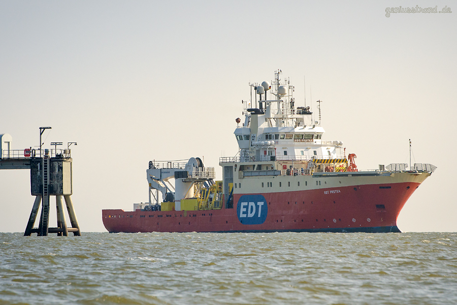 WILHELMSHAVEN: Offshore-Versorger EDT PROTEA (L 91 m), Multi Purpose Supply Vessel (MPSV)