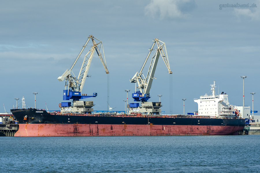 BULK TERMINAL WILHELMSHAVEN (BTW): Bulk Carrier HERMES am Außenanleger