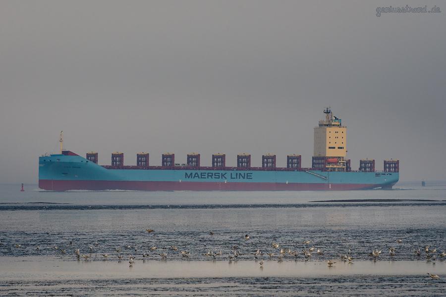 SCHIFFSABFAHRTEN JADEWESERPORT: Containerschiff VENTA MAERSK auslaufend