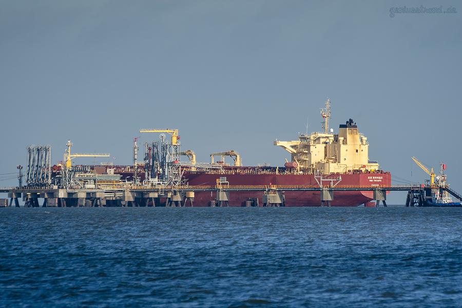 HES-Tankfarm Wilhelmshaven: Tanker PRO TRIUMPH am WRG-Inselanleger