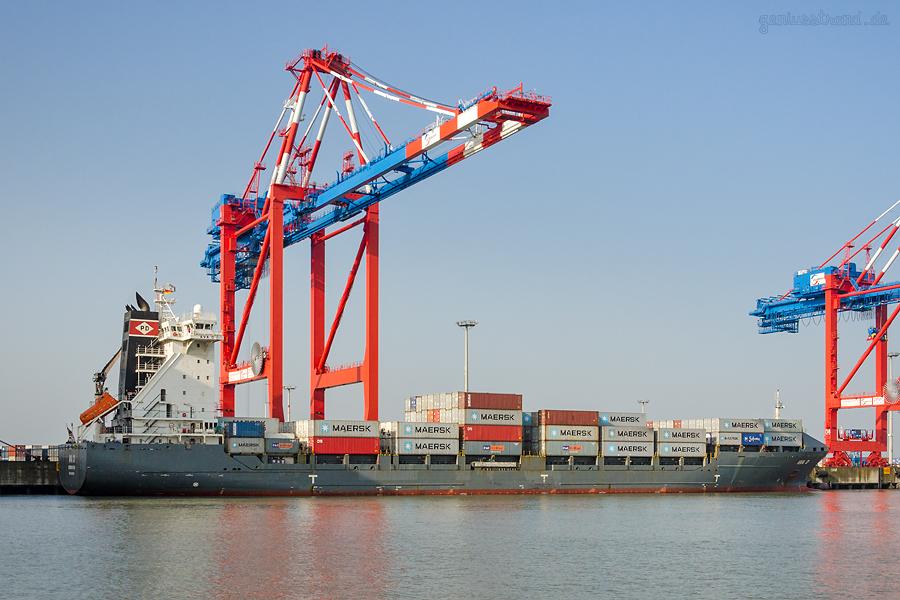 JADEWESERPORT WILHELMSHAVEN: Containerschiff AVA D am Containerterminal